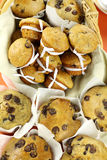 Choc Chip Muffins stock photos