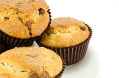 Choc chip muffins Stock Image