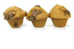 Choc Chip Muffins Stock Photography
