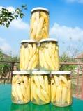 Choc de provisions de l'hiver, paprika chaud Image libre de droits