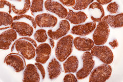 Choc flakes in a bowl with milk, close up Royalty Free Stock Image
