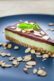 Choc and mint raw cake Stock Images