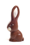 Chocalate Rabbit. Chocolate Rabbit shot on a white background Stock Photography