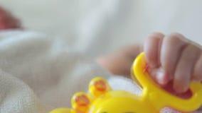 Chocalho Toy In a mão do bebê video estoque