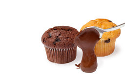 Chocholate muffins Royalty Free Stock Photography