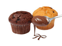 Chocholate muffins Stock Image
