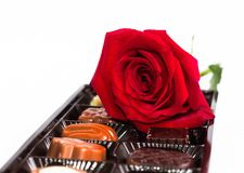 Chocholate and rose Royalty Free Stock Images