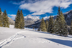 Chocholowska Valley in sunny day in winter, Tatra Mountains Stock Images