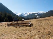 Chocholowskavallei in het Westen Tatras Royalty-vrije Stock Afbeelding