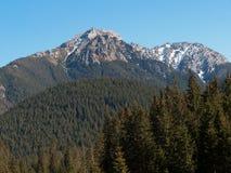 Chocholowskavallei in het Westen Tatras, Royalty-vrije Stock Afbeelding
