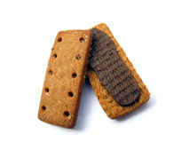 Choclate Biscuit Stock Photography