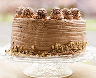 Choclate-Kuchen Stockfotos