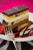 choco κέικ Στοκ Φωτογραφίες