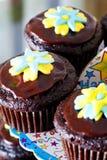 Choco maffins Stock Photo