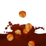 Choco Splash. Illustration of a Choco Splash with Hazelnuts Stock Photo