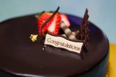 Chococake Royalty-vrije Stock Foto's