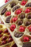 Chocolade allsorts Stock Afbeeldingen