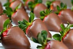 Chocolade Behandelde Aardbeien in Rijen Royalty-vrije Stock Foto