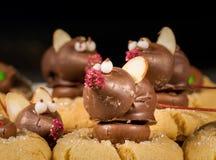 Chocolade behandelde muis bovenop koekjes Stock Afbeeldingen