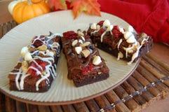 Chocolade Brownies met Noten, Amerikaanse veenbessen, Witte chocolade Royalty-vrije Stock Foto