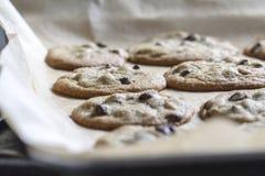 Chocolade Chip Cookies Stock Afbeelding