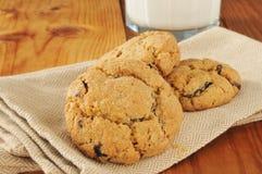 Chocolade Chip Cookies en Melk Royalty-vrije Stock Foto's