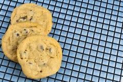 Chocolade Chip Cookies op Rek Stock Afbeeldingen