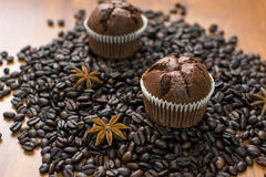 Chocolade cupcake 1 Royalty-vrije Stock Fotografie