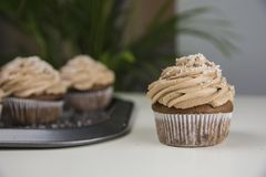 Chocolade cupcake met kokosnoot Stock Foto