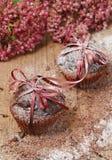 Chocolade cupcakes met gepoederde suiker Royalty-vrije Stock Afbeelding