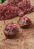 Chocolade cupcakes voor de dag van Valentine Royalty-vrije Stock Afbeelding