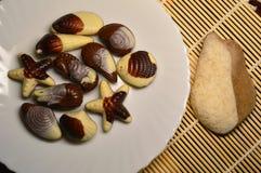 Chocolade in de vorm van overzeese schepselen en shells stock fotografie