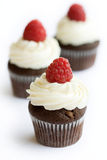 Chocolade en framboos cupcakes Stock Afbeelding