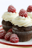 Chocolade en framboos cupcakes Royalty-vrije Stock Afbeelding