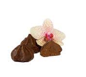 Chocolade en orchidee stock afbeeldingen
