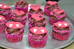 Chocolade Halloween Verfraaide Cupcakes Royalty-vrije Stock Afbeeldingen
