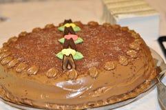 Chocolade kaka Royaltyfri Foto