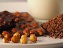 Chocolade met ingrediënten Stock Afbeeldingen