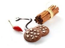 Chocolade met Spaanse pepers en kaneel Stock Fotografie