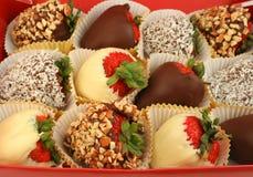 Chocolade ondergedompelde aardbeien stock foto