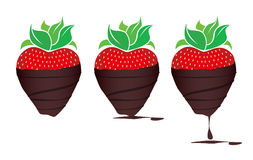 Chocolade-ondergedompelde Aardbeien Royalty-vrije Stock Afbeeldingen
