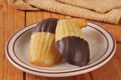 Chocolade ondergedompelde Madeleines Royalty-vrije Stock Foto