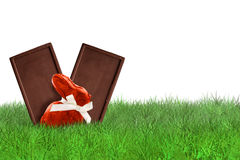 Chocolade op gras op witte achtergrond Royalty-vrije Stock Foto's