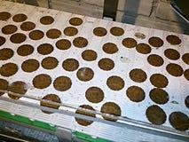 Chocolade op travellator Stock Foto