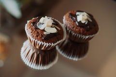 Chocolade twee cupcakes Stock Foto's