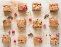 Chocoladebrownie Royalty-vrije Stock Afbeeldingen