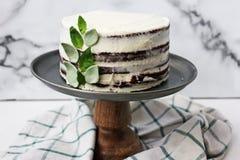 Chocoladecake met basilicumroom en passionfruit stroop Stock Afbeeldingen