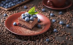 Chocoladecake met bosbessen en munt Stock Fotografie