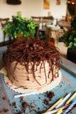 Chocoladecake met chocoladeeieren op bovenkant, met groene binnen installaties Stock Foto's