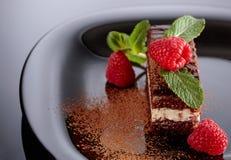 Chocoladecake met framboos en munt Stock Foto's